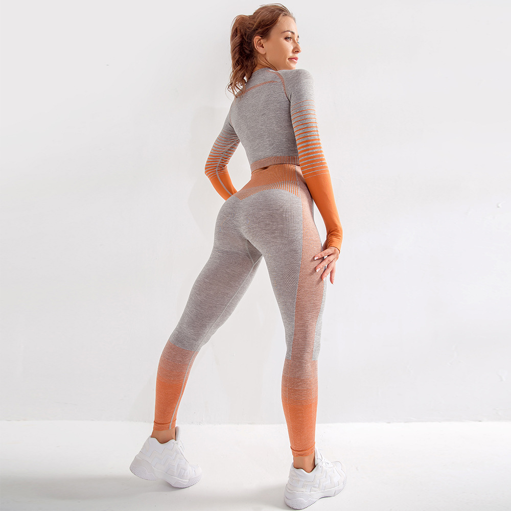 Seamless Sports Shirts Crop Top Leggings Sport Set Fitness Tracksuit Workout Set Yoga Suit for Women